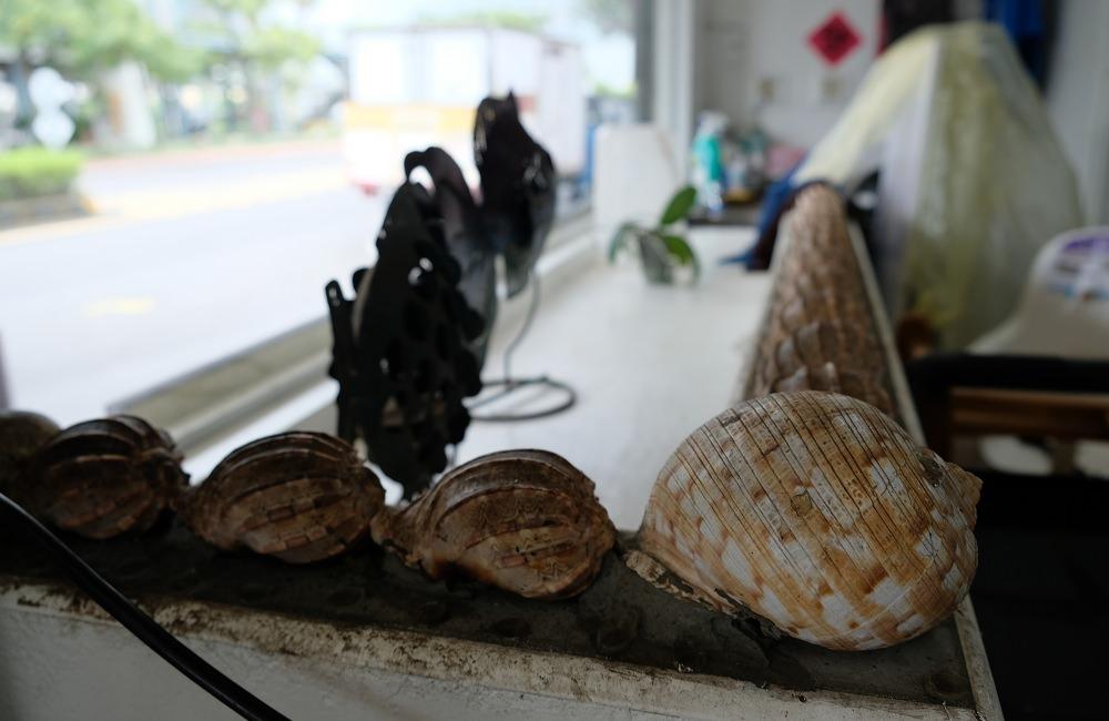 [台南]在地人推薦安平肥美平價海鮮鮮蚵  芙蓉食堂